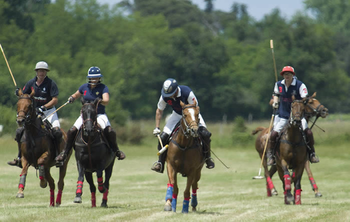 Polo in France