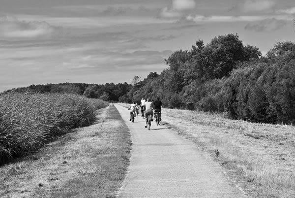 Cycling Vendays-Montalivet Marshlands